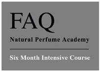 Six Month Intensive