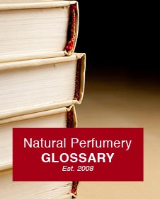 Natural Perfumery Glossary
