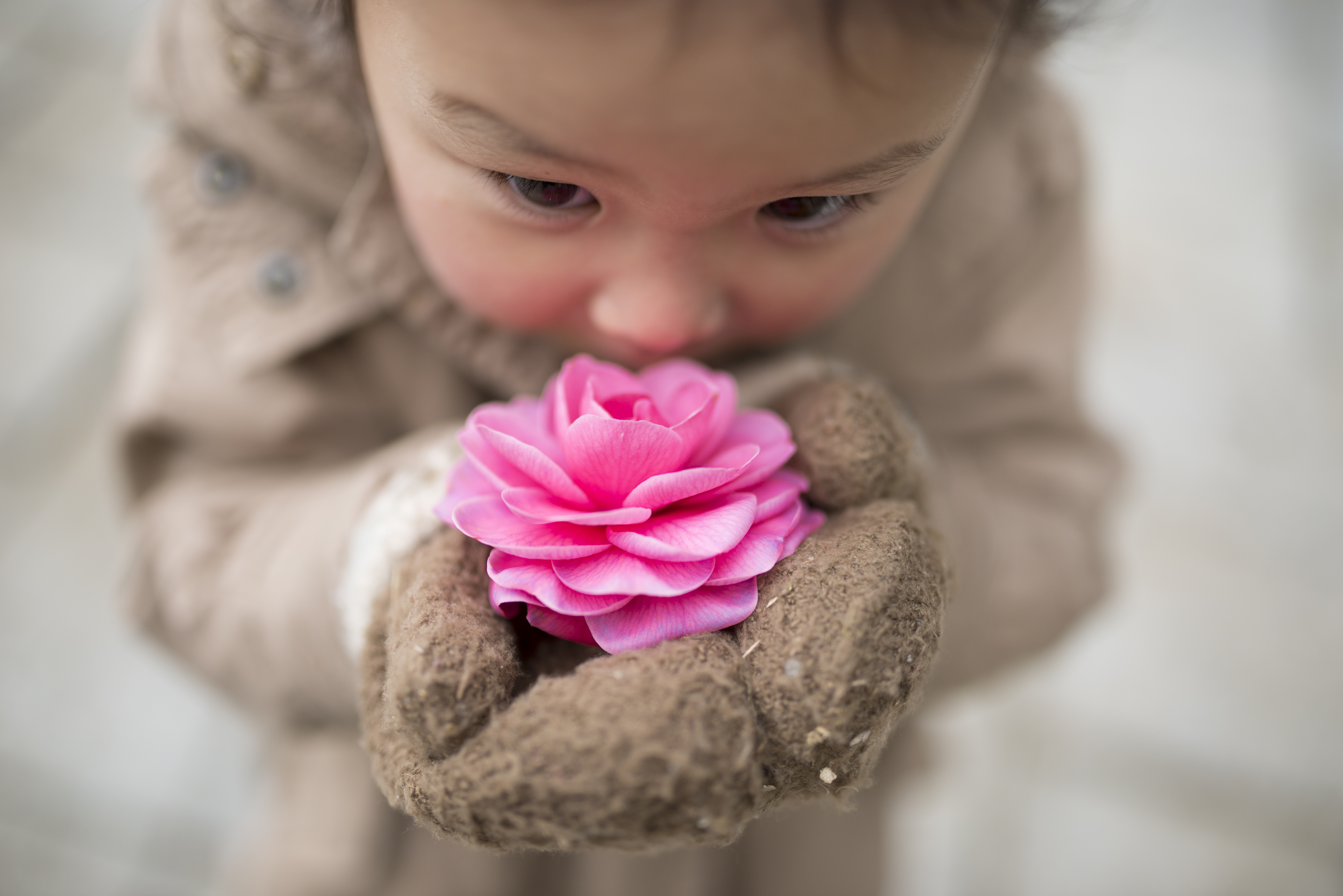 Child smelling a rose